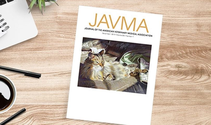 JAVA veterinary journal sitting on a desk