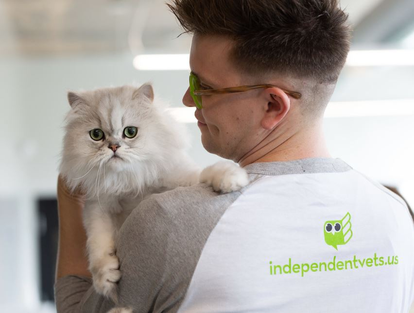 a man holding a fluffy white cat