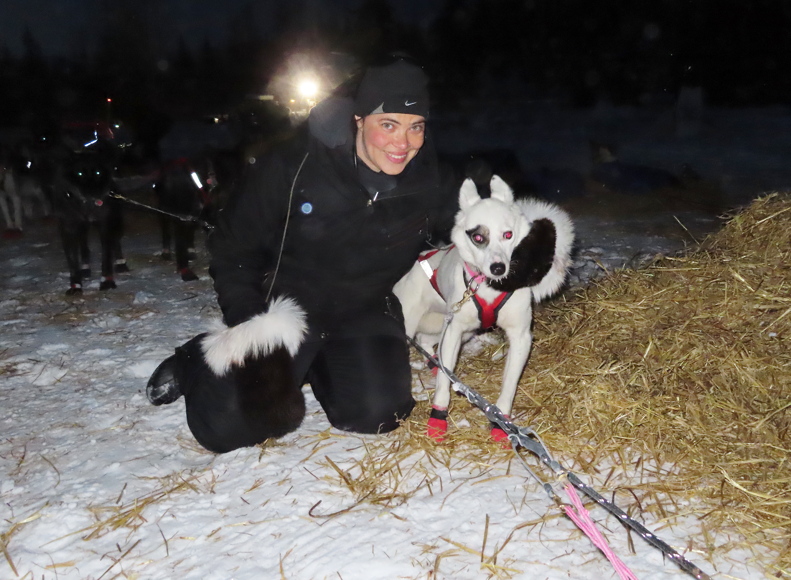 Vet and sled dog at Willow 300 race in Alaska