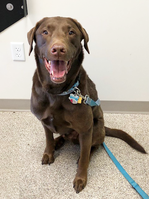 Sawyer, at our last appointment