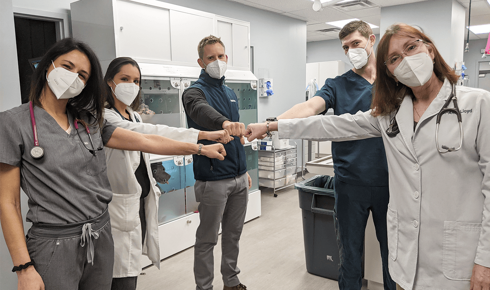 5 veterinarians working together