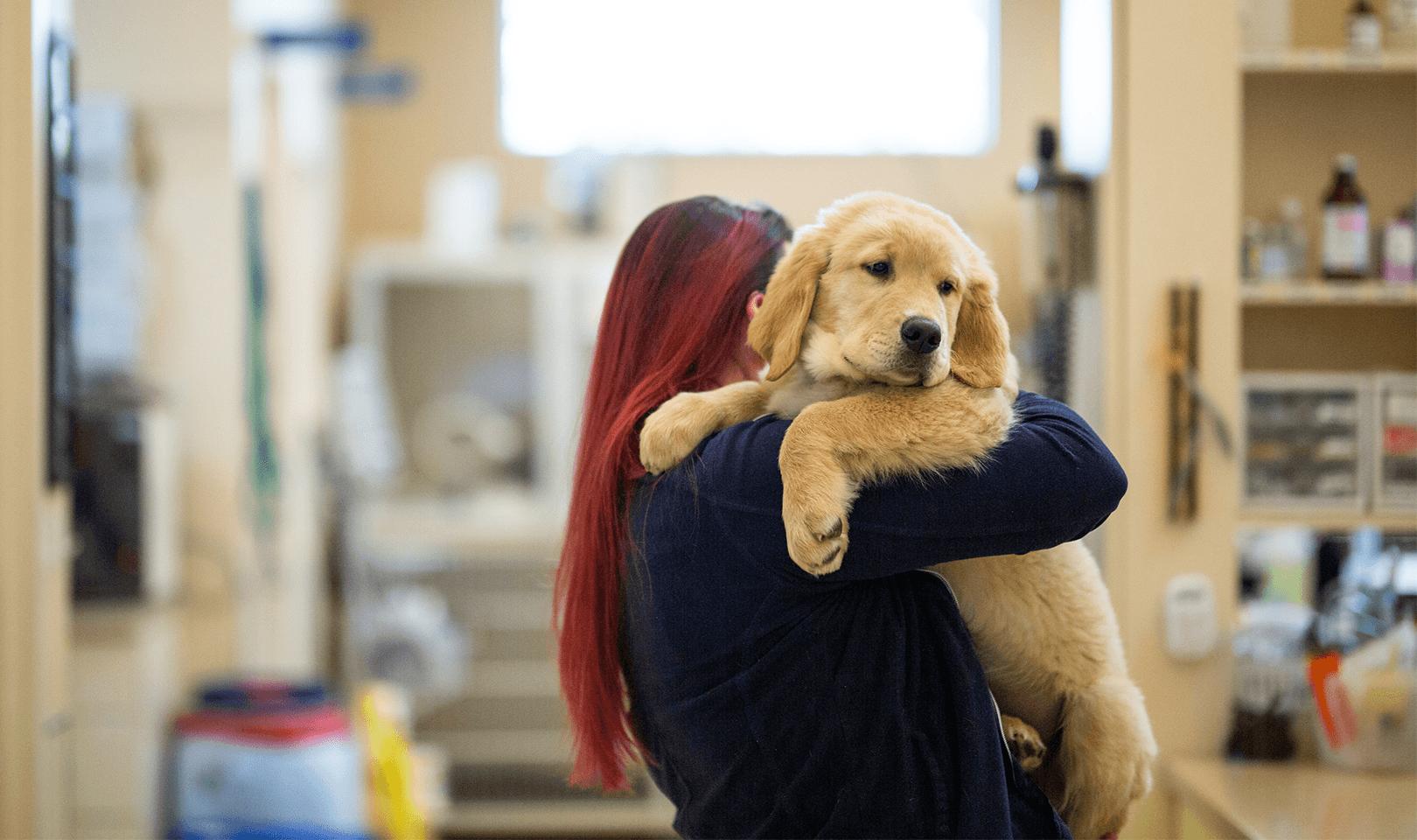a vet tech and a puppy